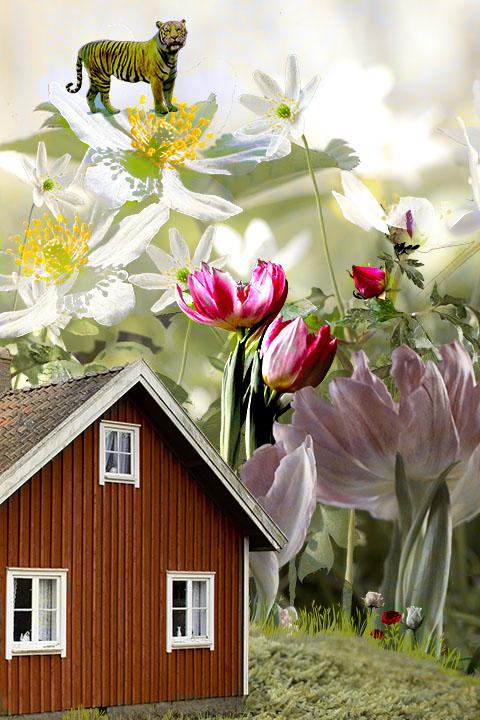 Mitt hus i Sagoskogen
