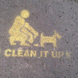 Antihundbajs-skylt nummer 3. Målad på trottoaren!