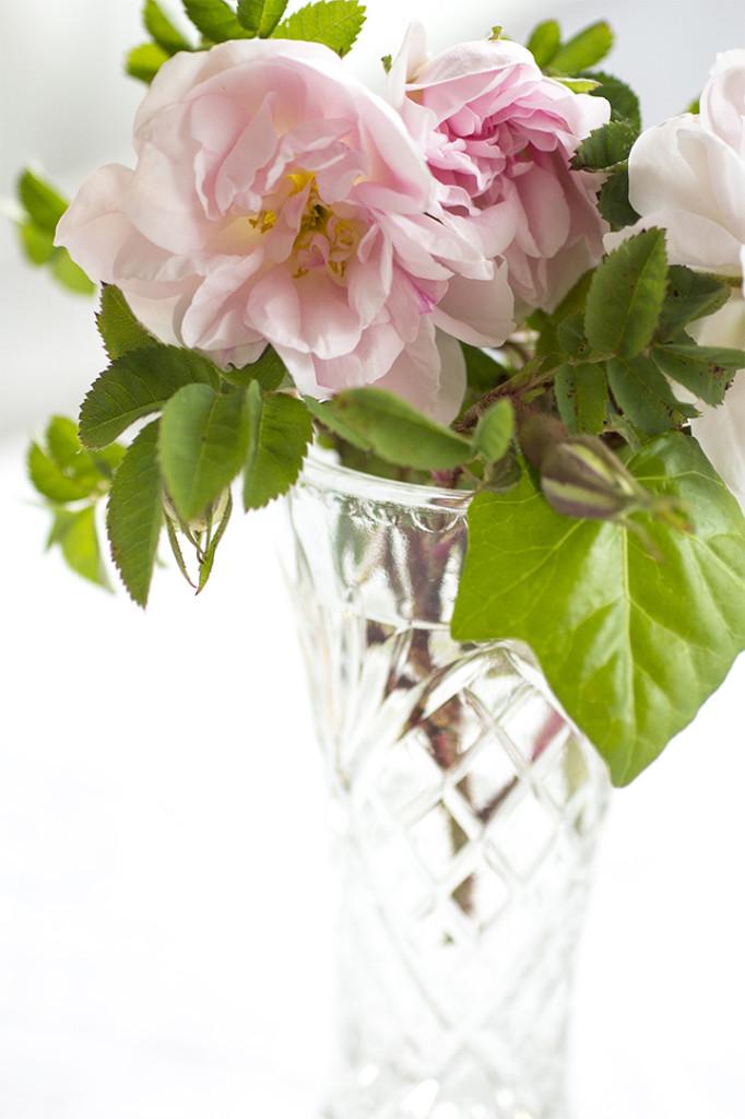 Jag har plockat in rosor från trädgården, Känner du hur UNDERBART dom doftar?