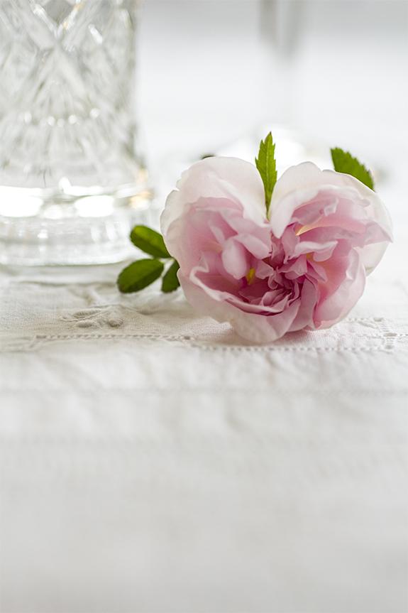 Det bästa med sommaren är att få tid att umgås med min familj och mina vänner, några rosor på bordet och lite gott att dricka! Välkommen!