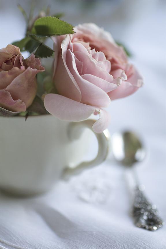 - Jojomen!... det kunde man ju räkna ut med tårna!!....för Margareta brukar ofta ha Rosor: i Kaffekopparna och även idag!!!.....