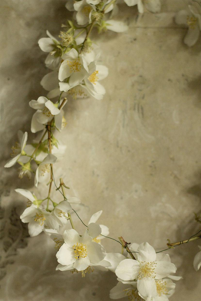 Blomsterkrans av små Jasminblommor