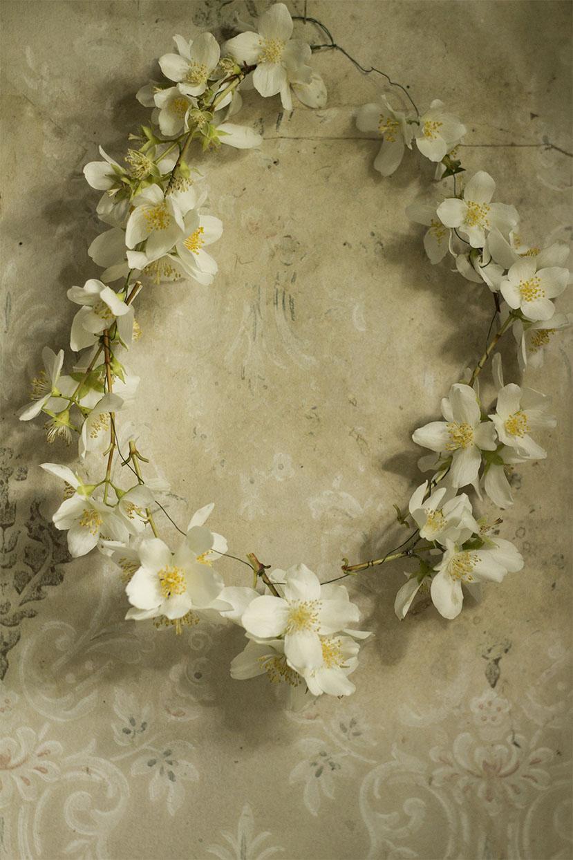 Min lilla krans av Jasmin    <3  Sockersöt  <3 !....
