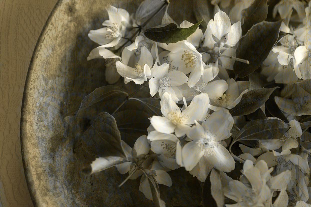 Först plockade jag små kvistar av Jasminen och la på en bricka